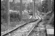 Трамвай номер 5, Княжево